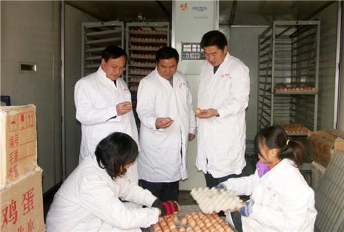 5%产蛋种鸡预混饲料RC65