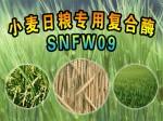 小麦日粮专用复合酶SNFW09