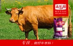 肉牛速肥预混料