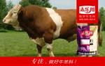 牛育肥饲料