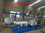PHJ100S双螺杆湿法膨化机每小时2-3吨