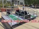 自动化养猪设备厂家直销 猪用分娩栏尺寸 猪产床厂家直销