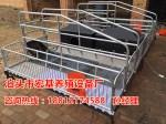 优质的猪用产仔栏生产销售 双体猪产仔栏价格 猪用分娩栏厂家直销