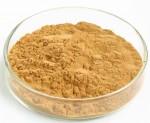 黄花草木犀种子提取物20:1多种规格黄花草木犀种子提取物黄酮价格