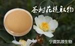 茶树花提取物  茶树花粉   1公斤起订