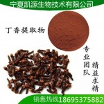 丁香提取物  丁香粉 10:1  多种规格 1公斤起订
